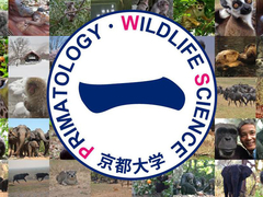 The Leading Graduate Program in Primatology and Wildlife Science